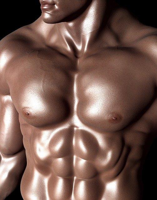 Est-ce que la musculation est un sport ?